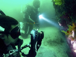 水中カメラに夢中