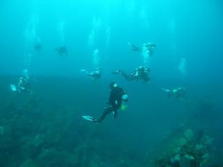 ファンダイビング 2.15熱海