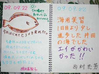 22井田1