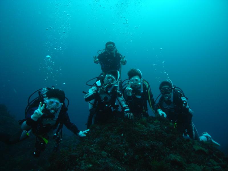 八丈島ダイビング  11.1
