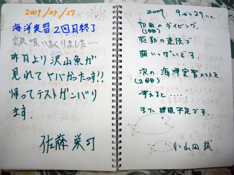 27井田3