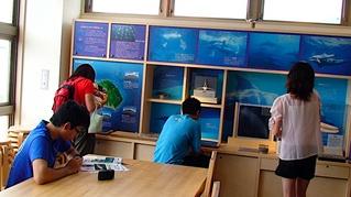 イルカ博物館も寄りました