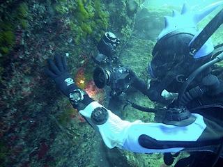 水中カメラは楽しいな