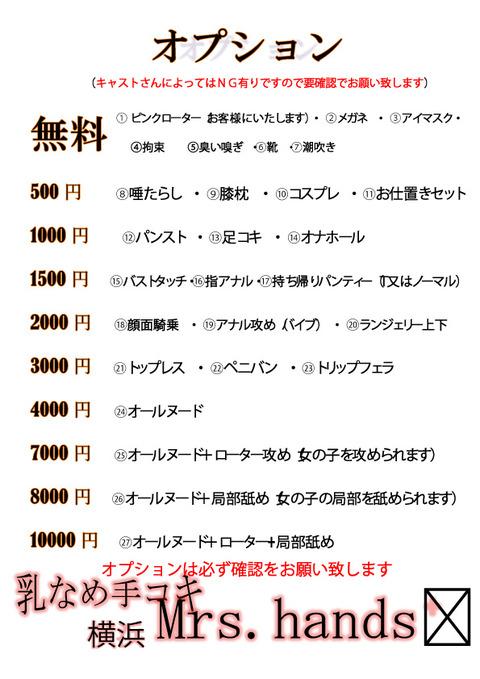 ミセス横浜オプション表