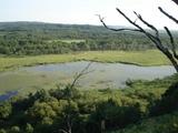 少し近い釧路湿原