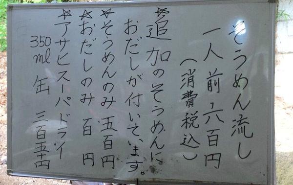 soumen nagasi_006[1][1][2]