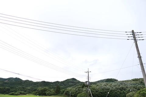P1001451