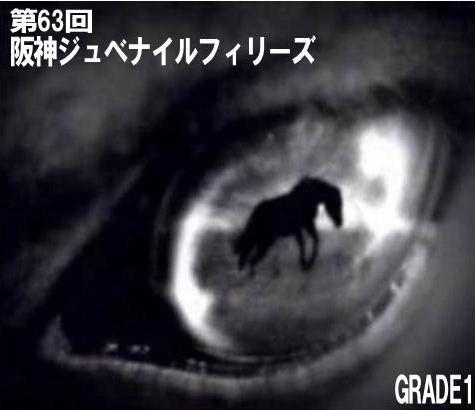 やはり勝負は3連単!~競馬予想~第63回阪神ジュベナイルフィリーズ(2011年) 【出走登録馬の考察と印象】
