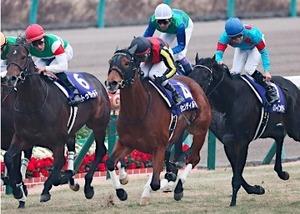 有馬記念 2014 ジェンティルドンナ