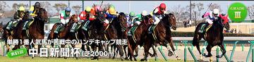 中日新聞杯2015