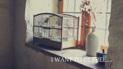 I want to go out.... (1)
