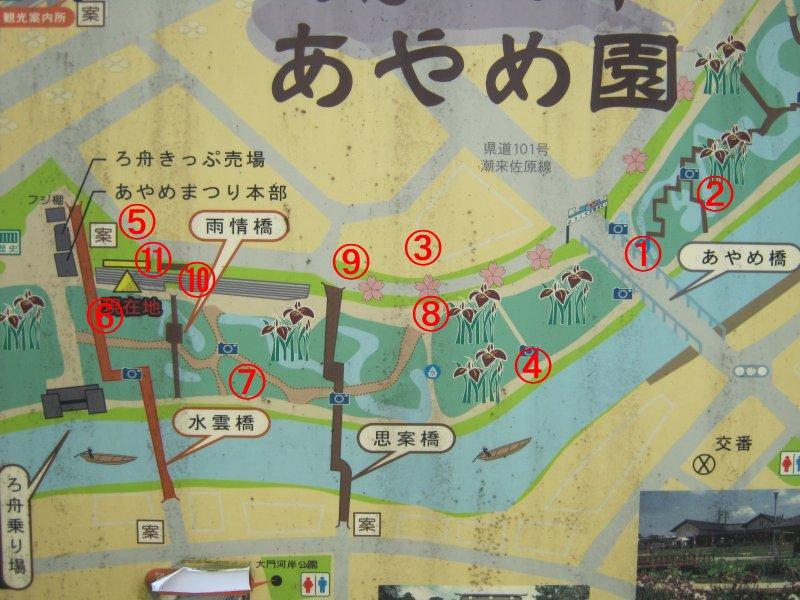 前川あやめ園の開花状況(その3...