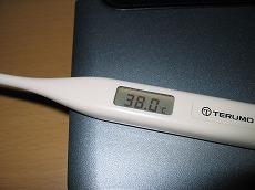 今夜の体温