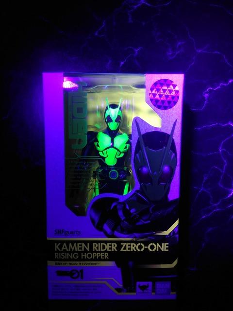 KAMEN RIDER ZERO-ONE RISING HOPPER 24