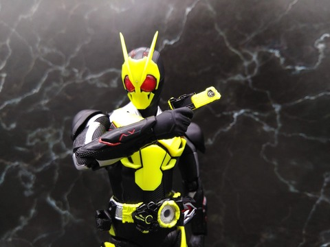 KAMEN RIDER ZERO-ONE RISING HOPPER 12