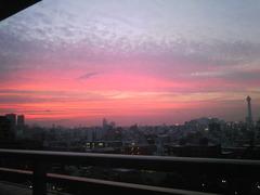 夕日が見事でした