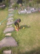 お庭で遊ぶ