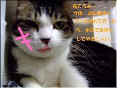 てめぇぇぇぇぇぇ!!怒
