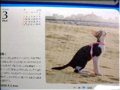 アーカたん★カレンダー採用♪♪