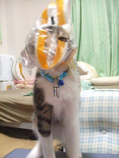 マニエラ仮面
