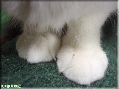 この足が・・。
