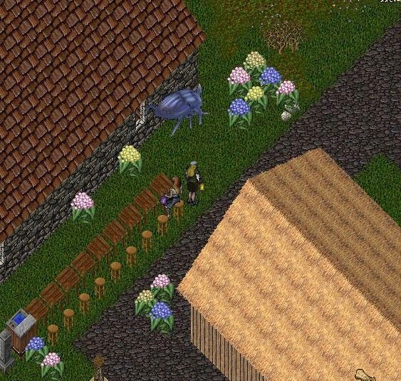 6月花ゲリラは紫陽花