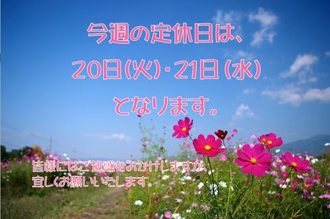 20定休日