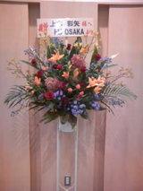 2008/10/11AYA KAMIKI お花