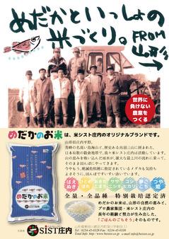 めだかのお米販売フライヤー_03