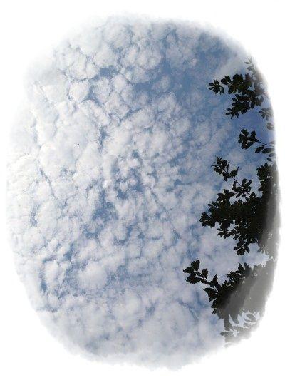 秋の空の雲_400