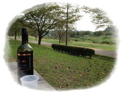 引地川親水公園でワイン