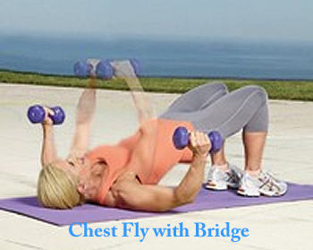 chest fly with bridge