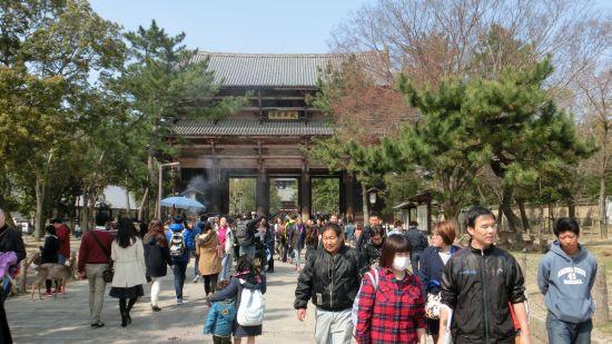 Nara_mon13