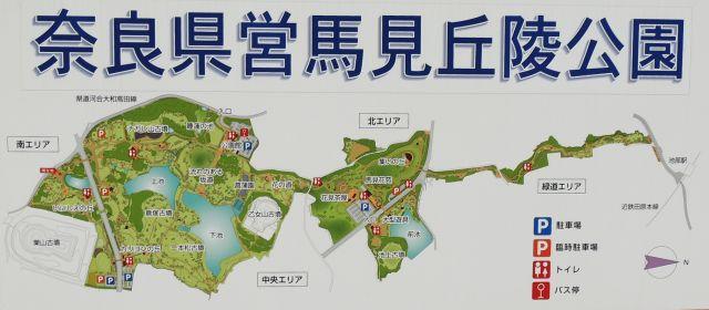 umami_map