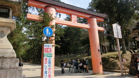 Nara_mon08