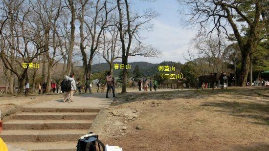 Nara_mon12