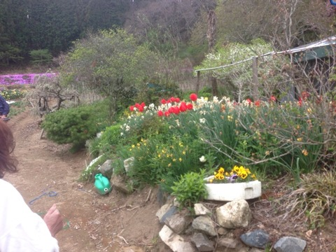 2014-05-04-14-41-50