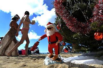 クリスマスデートで行きたいハワイ