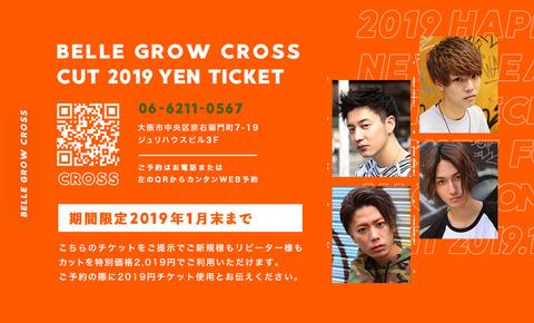 カット2019円チケット裏