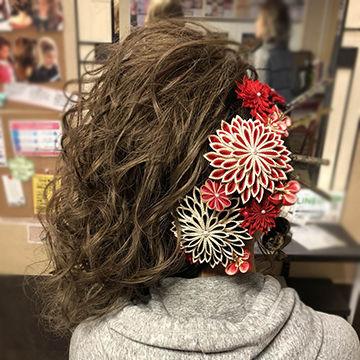 片寄せ盛り髪バックスタイル