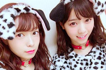 犬系女子の乃木坂46