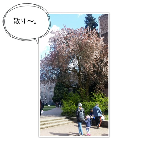 18-03-26-11-21-16-587_deco[1]