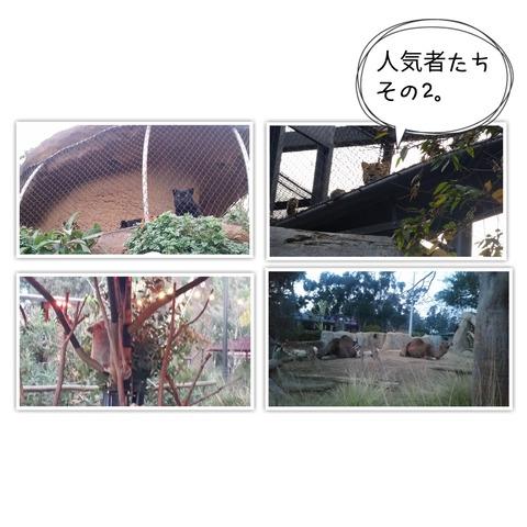 18-01-26-23-51-30-130_deco[1]