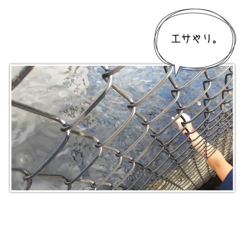 17-10-09-08-51-53-569_deco[1]