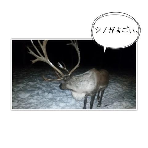 17-12-25-09-47-13-120_deco[1]