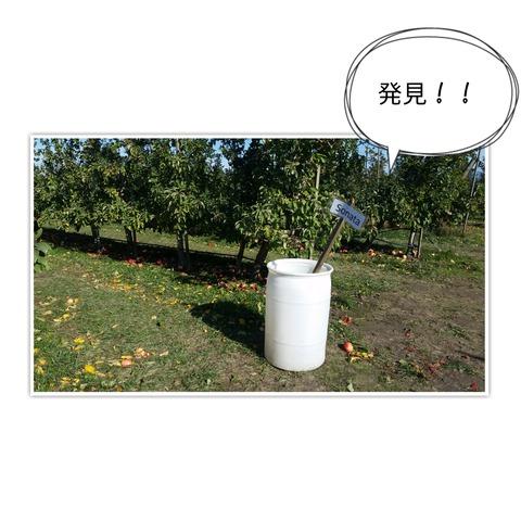 17-10-30-09-58-32-095_deco[1]
