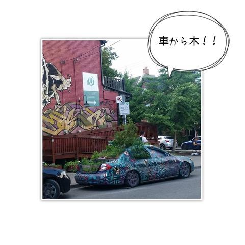 16-07-28-09-04-09-940_deco[1]