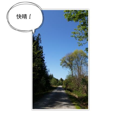 18-04-25-16-09-59-941_deco[1]