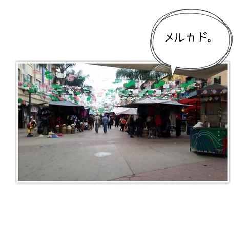 17-01-16-10-51-33-936_deco[1]