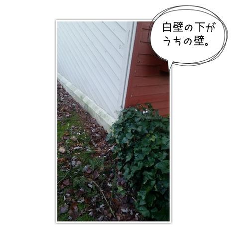 17-12-05-15-28-45-081_deco[1]